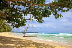 Gungahängning från träd över strandhavet Royaltyfri Foto