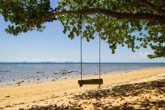 Gungan under trädet på sandstranden nära till havet arkivbild