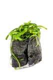 Gunkan met zeewier Royalty-vrije Stock Fotografie