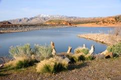 Gunlock-Vorratsbehälter-Nationalpark - Utah Stockbild