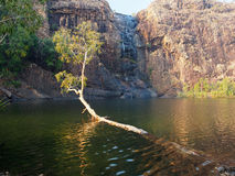 Gunlom (Waterfall Creek) Pool, Kakadu National Park, Australia Stock Photo