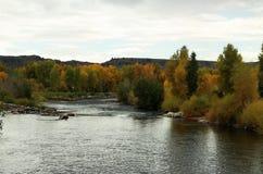 Gunnison flod Royaltyfri Fotografi