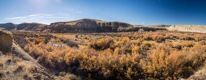 Gunnison flod i Delta County, Colorado Royaltyfri Foto