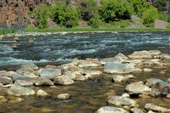 Gunnison flod i den svarta kanjonen Royaltyfri Bild