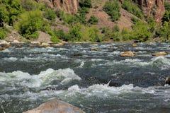 Gunnison flod i den svarta kanjonen Arkivbilder