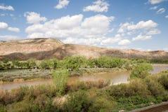 gunnisonflod Arkivfoto