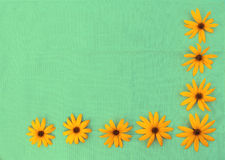 Gunny cloth and flowers Royalty Free Stock Photos