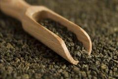 Gunpowder green tea in scoop. On tea background. Selective focus stock photos