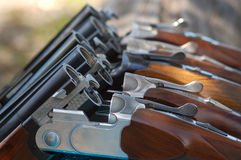 Guns in Line Royalty Free Stock Photos