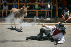 Gunslinger and the Smoking Gun - Oatman, AZ. Wild burro and tourists look on as gunslinger falls with smoking gun in staged gun fight at the Western town of Stock Image