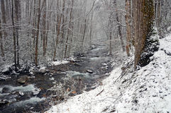 Gunter Creek in Spring Snow Stock Images