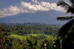 Gunung Batukaru, Bali, Indonesia Fotografia Stock Libera da Diritti