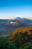 Gunung Bromo Volcano Indonesia Royalty Free Stock Photo