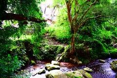 Gunung Kawi Стоковое Изображение RF