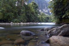Gunung Mulu nationalparkflod i Borneo, Malaysia Arkivbilder