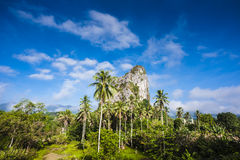 Gunung Reng Royalty Free Stock Photos