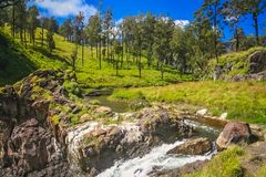 Gunung Rinjani river waterfall Stock Photography