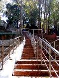 Gupteswar tempel Arkivbild
