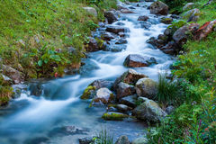 Gurgling mountain stream. Mountain stream in Tatras Stock Photography