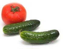 Gurka och tomat på vit bakgrund Royaltyfria Foton