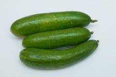 Gurka tre på en vit bakgrund bakgrund vita isolerade grönsaker Nära övre vita nya isolerade smakliga grönsaker för kök åkerbruka  Fotografering för Bildbyråer