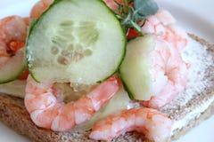 gurkasmörgåsräkor arkivbild