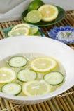 Gurke-Zitrusfrucht Lizenzfreie Stockfotografie
