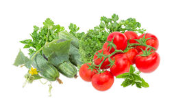 Gurken mit Stamm, Niederlassungen der Tomaten und Grüns Stockfoto