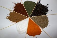 Gurkmeja och blandade kryddor Arkivfoto