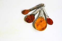 Gurkmejapulver, kajennpeppar, paprika och kanel, i att mäta skedar Royaltyfri Bild