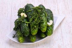 gurkor green inlagt Fotografering för Bildbyråer