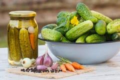 Gurkor i metallbunke, grönsaker och kryddor för att grava och krus gravade gurkor Arkivbild
