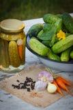 Gurkor i metallbunke, grönsaker och kryddor för att grava och krus gravade gurkor Royaltyfri Bild
