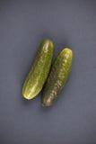 gurkor två Royaltyfri Foto