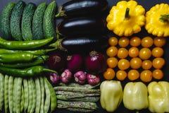 Gurkor, varma peppar, bönafröskidor, ärtor, aubergine, söta peppar, gula tomater och squashar är ordnade i rad på en svart Royaltyfri Fotografi