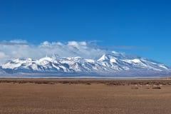 Gurla Mandhata Mount and herd of kiang, Tibet Royalty Free Stock Photography
