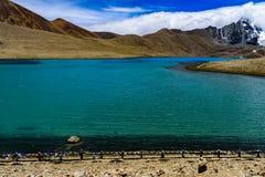 Gurudongmar See, Sikkim, Indien stockbilder