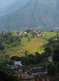 Gurungs-Dorf auf einem Gipfel und Reisfeldern Lizenzfreies Stockfoto