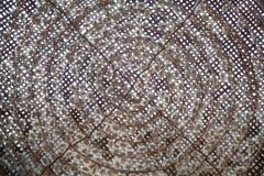 Gusano de seda en capullo Fotos de archivo