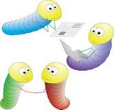 Gusanos coloreados Imagen de archivo libre de regalías