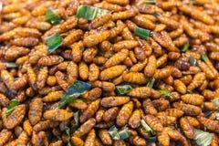 Gusanos de harina fritos de los insectos para el bocado Foto de archivo
