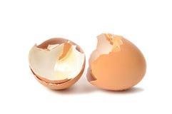 Gusci d'uovo fotografie stock libere da diritti