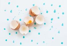 Gusci d'uovo rotti del pollo Immagine Stock
