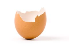 Guscio d'uovo fotografia stock