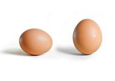 Guscio d'uovo rotto Fotografie Stock Libere da Diritti