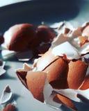 Guscio d'uovo rotto/incrinato Fotografie Stock