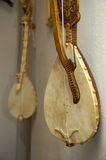 Gusle. Are montenegrin instrument Royalty Free Stock Image