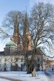Gustavianum и Башни Близнецы собора Уппсалы Стоковая Фотография