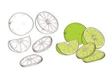 Gusto acido acido acidulato di verdure del limone Fotografie Stock