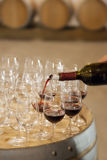 Gusto de vino fotos de archivo libres de regalías
